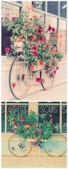 Blooming bicycle
